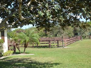 Pasture at Hidden Knoll South